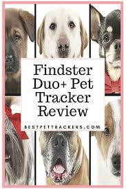 Findster Duo Review Pros Cons And Best Price With Free Shipping