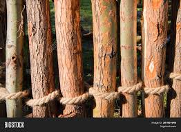 Rope Knotted Around Image Photo Free Trial Bigstock