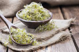 broccoli sprouts or supplements