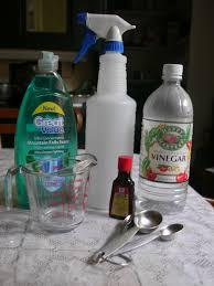 homemade fly spray for horses 2 talk