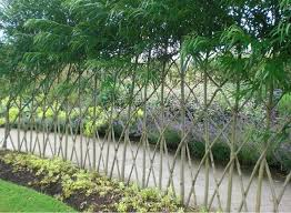 23 Amazing Examples Of Living Willow Fences Home Design Garden Architecture Blog Magazine In 2020 Living Willow Fence Willow Fence Fence Plants