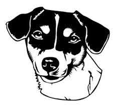 Jack Russell Head 2 Decal Sticker