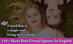 short best friend quotes in english cute collection