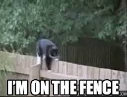 Sitting On The Fence Gifs Tenor