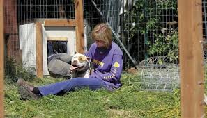Volunteers Build Fences To Free Dogs Of Their Chains Local Tdn Com