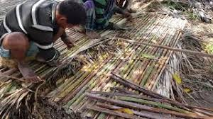 Primitive Technology Date Palm Leaf Fence Making For Village House Fence Making Unique Youtube