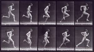 The Scoundrel Harry Larkyns and His Pitiless Killing by the Photographer Eadweard  Muybridge review - The TLS