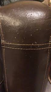 cat scratches punctures on faux leather