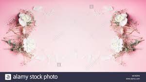 Hermosas Flores Bastidor Sobre Fondo De Color Rosa Pastel Vista