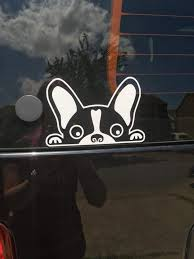 Car Decal Puppy Looking Out Creative Crafts Car Decals Creative