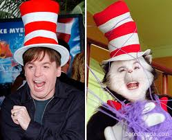 to0eb4083 cat in the hat before after