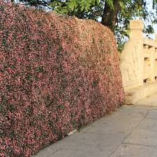 Home Outdoor Decoration Artificial Boxwood Hedge Fence Screen Greenery Panels For Sale Ebay