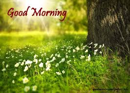 latest good morning poster free