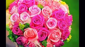 صور اجمل الورود في العالم