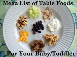 foods for your baby or toddler