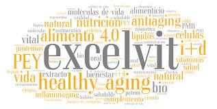 Resultado de imagen de excelvit logo