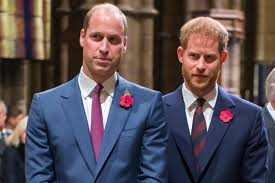 Prince Harry appears to hint at rift between him and Prince William | Page  Six
