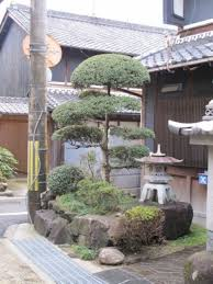 japanese inspired front yard