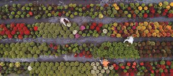 starting a gardening business 10 major