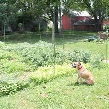 Diy Deer Fence Kit Gardentrends