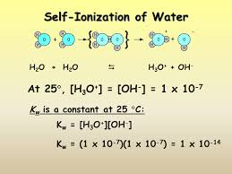 what is the chemical equation for self