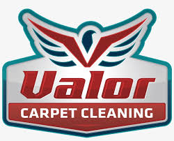 valor carpet cleaning logo design