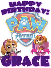 Personalized Custom Paw Patrol Skye Birthday Shirt T Shirt Very