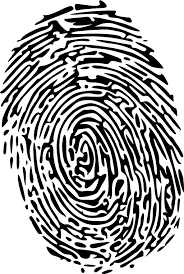Fingerprint Modified Clipart | i2Clipart - Royalty Free Public ...
