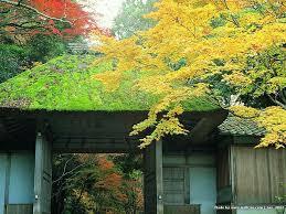 japanese garden in kyoto zen garden of