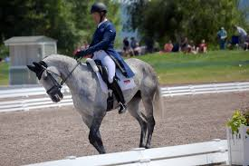 Dressage in the Mountains - Tamra Smith and Fleeceworks Ro… | Flickr