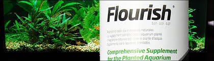 best aquarium plant fertilizer food