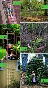 roundup 6 diy garden trellis ideas