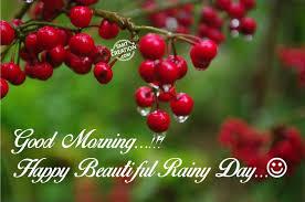 good morning happy beaautiful rainy