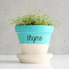 Flower Pots Labels Vinyl Decal Flowers Name Labels Sticker Garden Decoration Accessories Pot Not Included Sticker Board Stickers Chicagosticker Car Aliexpress