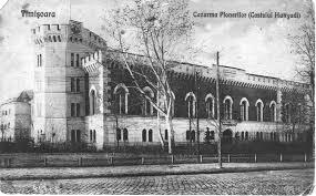 Neuromed - Castelul Huniade – inima Cetății Timişoarei O...   Facebook