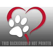Amazon Com Magnet 7x7 Inch Large Heart W Dog Paw Sticker No Background Lover Pet Adopt Animal Magnetic Vinyl Bumper Sticker Sticks To Any Metal Fridge Car Signs Kitchen Dining