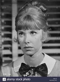 The Nanny (1965) Wendy Craig, Date: 1965 Stock Photo - Alamy