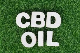 Image result for cbd oil