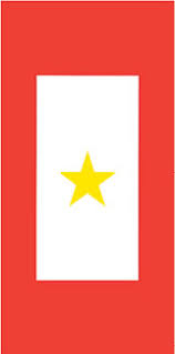 Gold Star Window Decal American Legion Flag Emblem