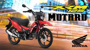 xrm125 motard pgm fi series color