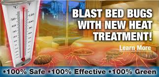 Download Elite Termite And Pest Control  Pics