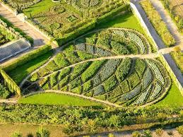 beautiful vegetable gardens plus design