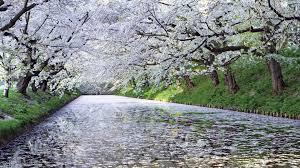 Природа. 50 чудесных фотокартин на тему Времена года. Весна (50 ...