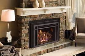 fireplace glass doors gas logs