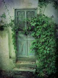 gorgeous old garden door old french