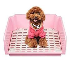 Buy Dog Potty Indoor Cat Litter Box With Fence Portable Potty For Puppies And Small Pets Pink Online At Low Prices In India Amazon In