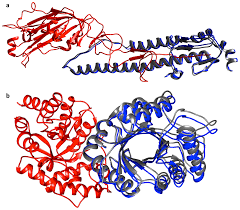 Structural Interface Parameters Are Discriminatory in Recognising  Near-Native Poses of Protein-Protein Interactions