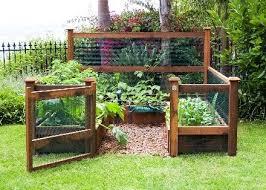small vegetable gardens