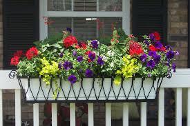 Medallion Window Box Or Liner Hooks Lattice Blog Window Box Flowers Balcony Flower Box Railing Flower Boxes
