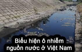 Ô nhiễm nguồn nước là gì? Hậu quả của ô nhiễm nguồn nước - GREEN